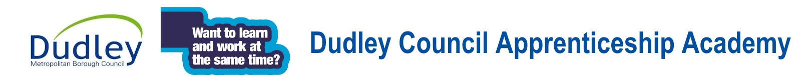 Dudley Council Apprenticeships Academy